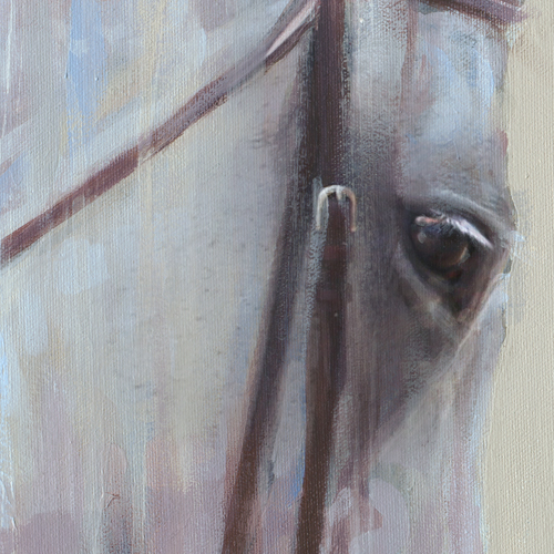 Summer Show Hunter - Beautiful eye detail of the contemporary acrylic by equine artist Vanessa Whittell